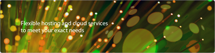 Flexible hosting and cloud services to meet your exact needs