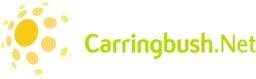 Carringbush.Net, Melbourne based web hosting and computer services